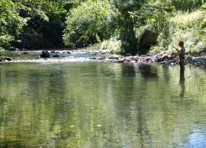 pêche rivière jaur